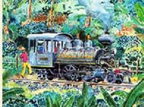tren cafetero ferrocarril cafetero