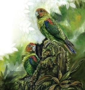 Loro multicolor de Caldas
