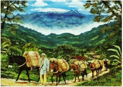 Los caminos del café - Luis Guillermo Vallejo