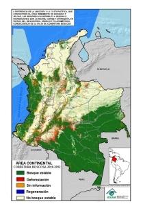 X 02-6-deforestaciion-en-colombia